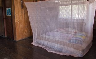 simple room with mattress and mosquito net