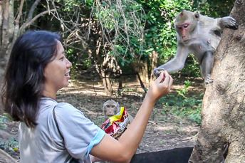woman feeding a monkey