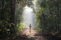man standing in britly lit forest opening
